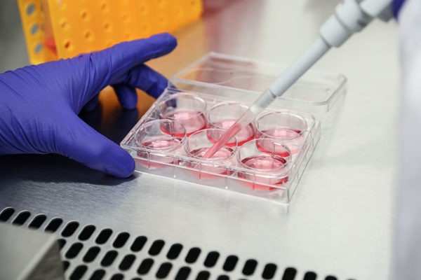RoverMed BioSciences, LLC - CMOCRO